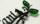 ステンレスレーザーカット表札「小鳥のさえずり」